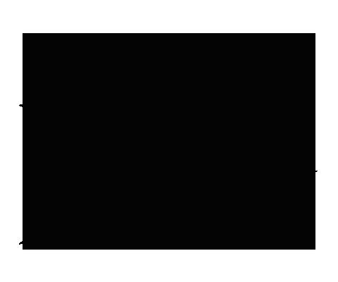 Mur Logo