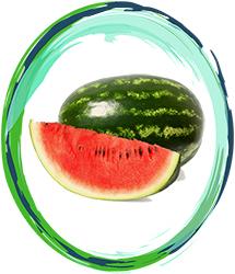 Watermelon Innovation Υγρα Αναπληρωσης